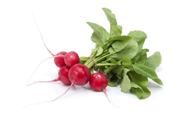 beste koolhydraatarme groenten radijs